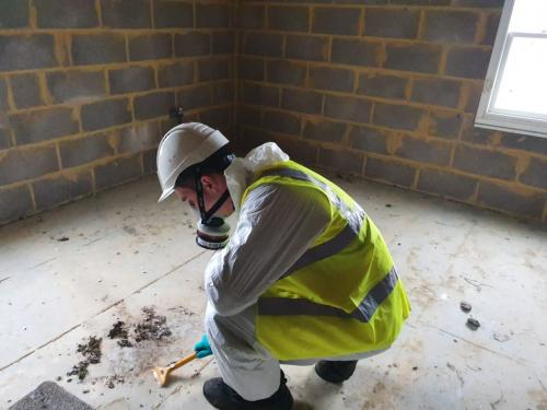 Pest Control contracts Bournemouth