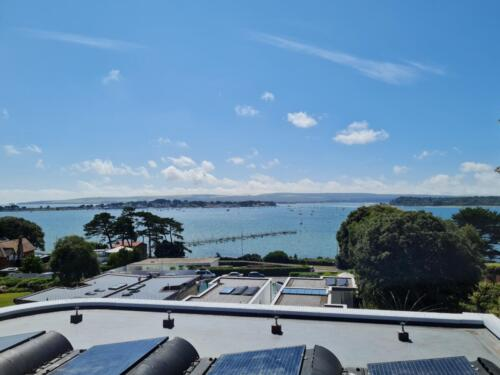 Seagull Control and Beautiful Poole Harbour