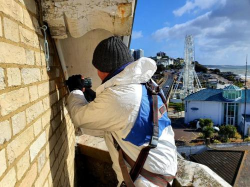 pest removal services Wimborne