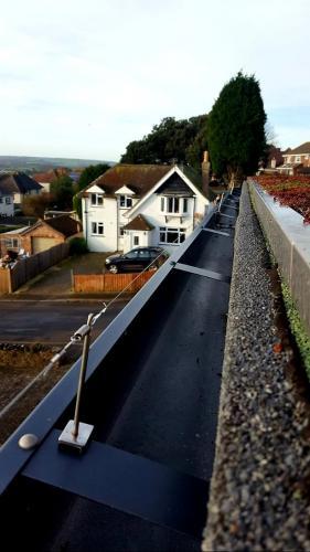 seagull control Bournemouth 2
